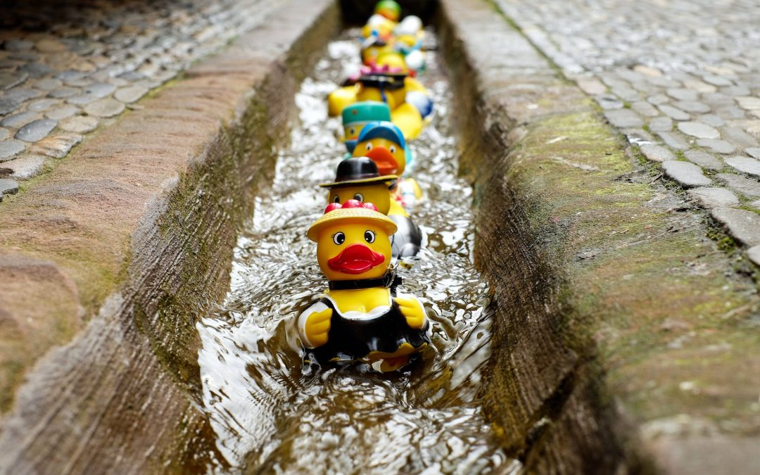 Does Your Janitorial Services Company Have Their Ducks in a Row?
