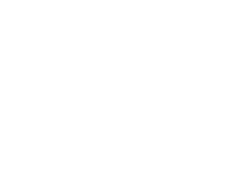 Member of BSCAI - Building Service Contractors Association International